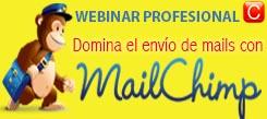 webinar profesional envio newsletters maichimo redes sociales community internet the social media company